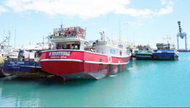 Hawaii longliners docked at Pier 22