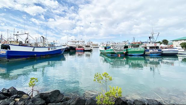 Fishing boats in the channel adjacent to the Pier 38 Fish Market, Honolulu Harbor