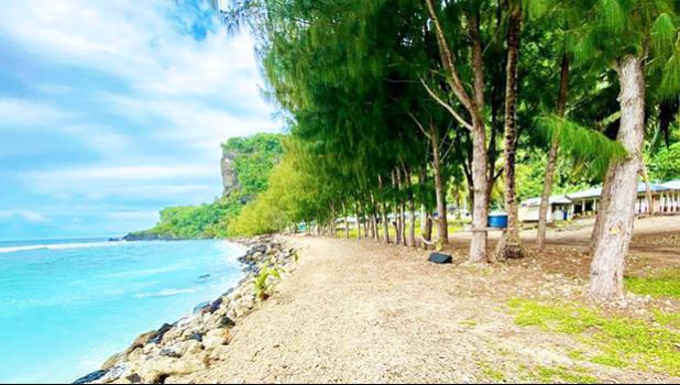Line of toa trees near the coastline of Faleāsao Village.