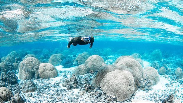 Bert fuiava snorkels in the shall Ofu pools.