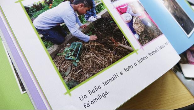 Samoan language picture book created by A'oga Fa'asamoa. [Photo: RNZI]