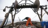 Industrialization hasn't made fishing more efficient. (AP Photo/Robert F. Bukaty)