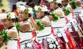 The Pasifika Festival is back for another year, celebrating its 26th birthday. [Photo / Gareth Cooke Subzero via NZ Herald]