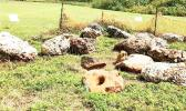 Artifacts uncovered on Guam