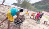 Faleasao residents cleaning up beach