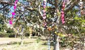 Garlands of more than 3,600 paper hearts on a walnut tree