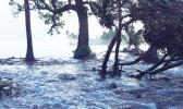 Tide waters flooding in Marshall Islands