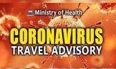 Coronavirus logo