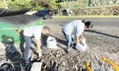 Production Supervisor Fitu Vaeono and Fish Coordination Supervisor Tafa Atapana